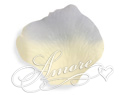 Blue Angel  Silk Rose Petals Wedding 1000