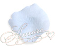 Blue Sky  Silk Rose Petals Wedding 1000