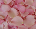 Light Pink Fresh Rose Petals Wedding 6000