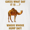 Hump Day Camel T-shirt Funny Tee