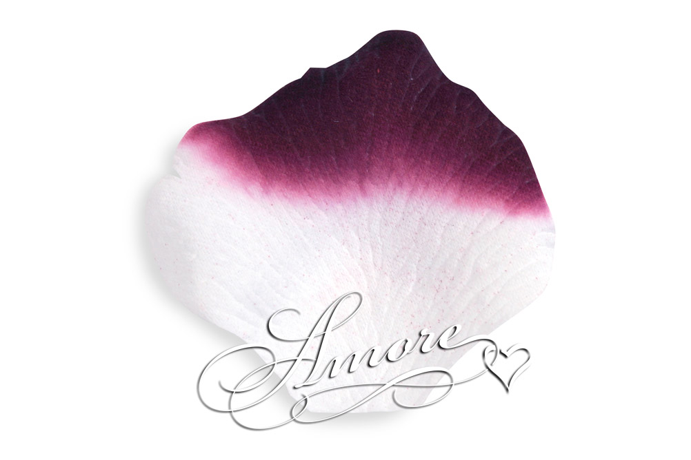 Luxor Eggplant and White Silk Wedding Rose Petals 2000